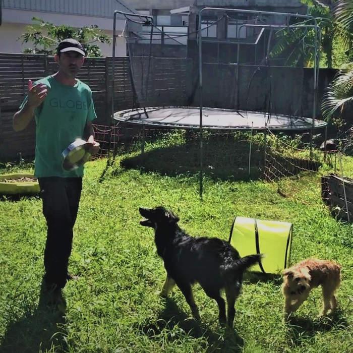 Les bases de l'éducation canine avec Denis de Flair-Play Canin